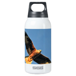 Red Kite Bird of Prey Insulated Water Bottle
