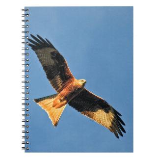 Red Kite Bird of Prey Spiral Notebooks