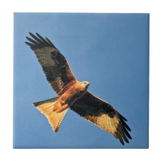 Red Kite Bird of Prey Tiles