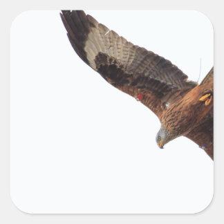 Red Kite In Sky Square Sticker