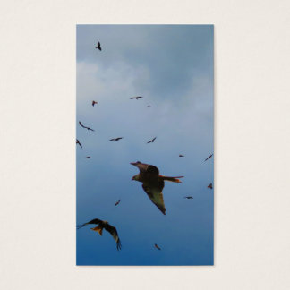 RED KITES BUZZARDS BUSINESS CARD