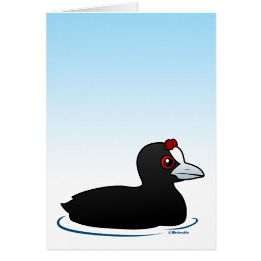 Red-knobbed Coot Greeting Card