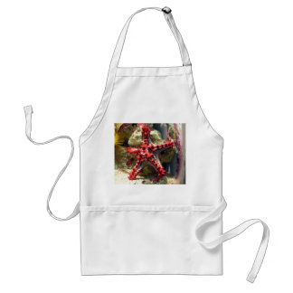Red Knobbed Starfish - Incredible Shot Adult Apron
