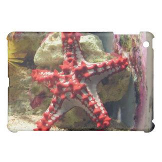 Red Knobbed Starfish - Incredible Shot iPad Mini Cover