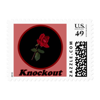Red Knockout Rose Postage Stamp
