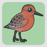 Red Knot Square Sticker