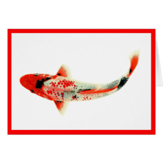 Red Koi Card