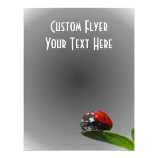 """Red Lady Bug On Leaf - B&W Fading Background 8.5"""" X 11"""" Flyer"""