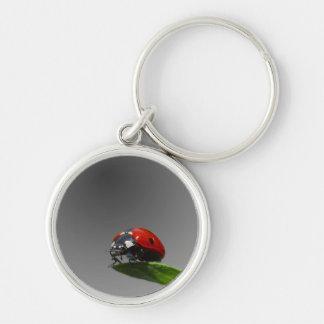 Red Lady Bug On Leaf - B&W Fading Background Keychain