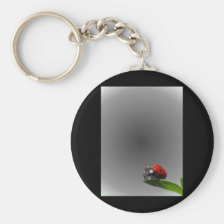 Red Lady Bug On Leaf - B&W Fading Background Keychain