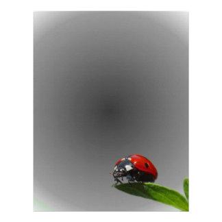 Red Lady Bug On Leaf - B&W Fading Background Letterhead
