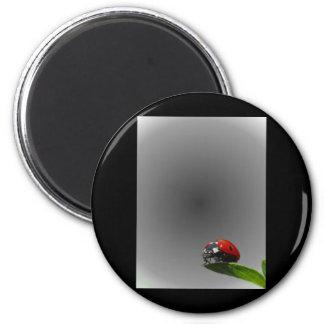 Red Lady Bug On Leaf - B&W Fading Background 2 Inch Round Magnet