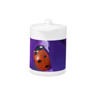 Red ladybird on crocus teapot