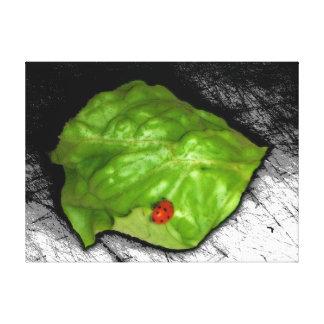 Red Ladybug on Green Leaf Illustration Canvas Print