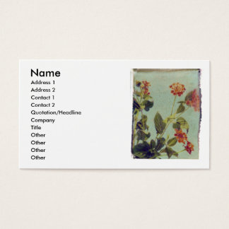 Red Lantana profile card