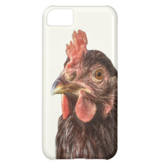 Red Laying Hen Chicken Photo Case For iPhone 5C
