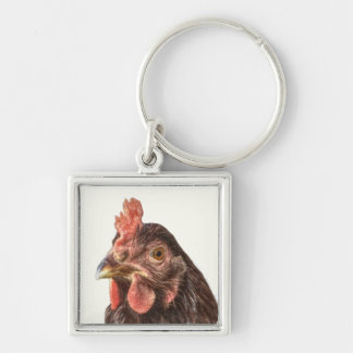 Red Laying Hen Chicken Photo Silver-Colored Square Keychain