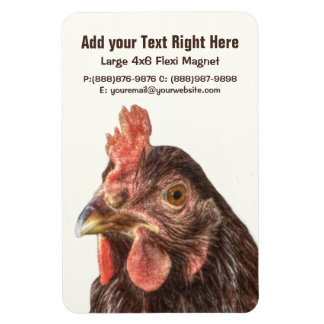 Red Laying Hen Chicken Photo Magnet