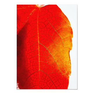 Red Leaf canvas Card