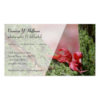 Red Leaf in Balance Business Card