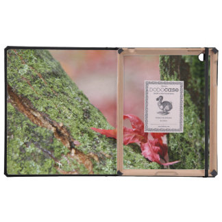 Red Leaf in Balance Case For iPad