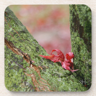 Red Leaf in Balance Coaster