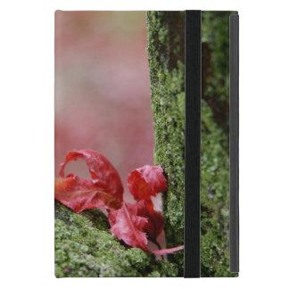 Red Leaf in Balance iPad Mini Cover