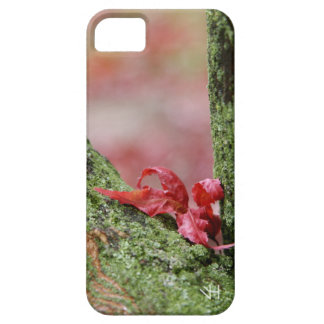Red Leaf in Balance iPhone SE/5/5s Case