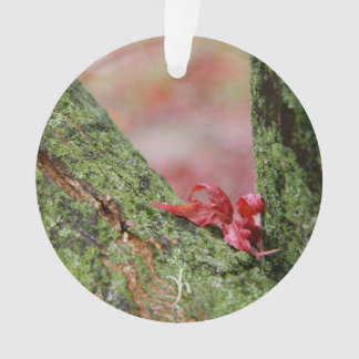 Red Leaf in Balance Ornament
