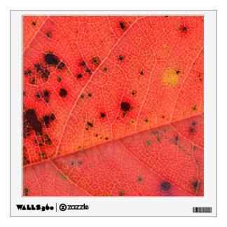 Red Leaf Macro Wall Sticker