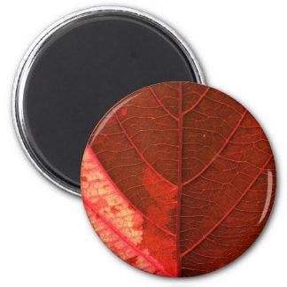 Red Leaf 2 Inch Round Magnet