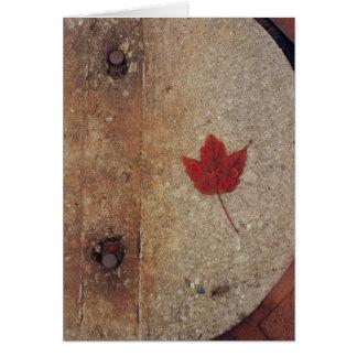 Red Leaf on Concrete Card