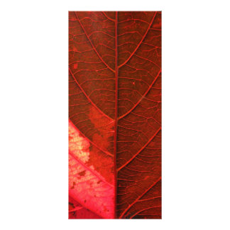 Red Leaf Rack Card