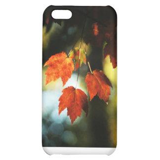 Red leaf trio iPhone 5C cover
