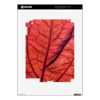 Red Leaf Ultra-Closeup iPad 2 Skins