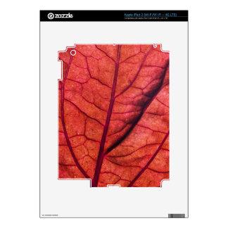Red Leaf Ultra-Closeup iPad 3 Decal