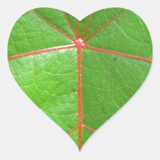 Red Leaf Veins Heart Sticker