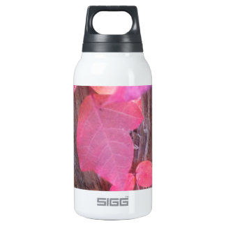 red leaf vine on fencepost from above.jpg 10 oz insulated SIGG thermos water bottle