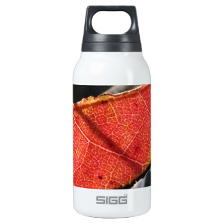 Red leaf with Spanish Moss SIGG Thermo 0.3L Insulated Bottle