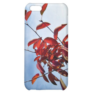 Red Leaves Against Blue Sky Case For iPhone 5C