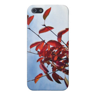 Red Leaves Against Blue Sky iPhone 5 Cover