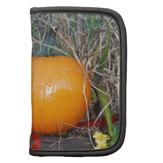Red leaves and Pumpkin Folio Planners