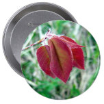 Red Leaves Button
