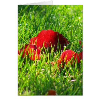 Red Leaves in Green Grass Card