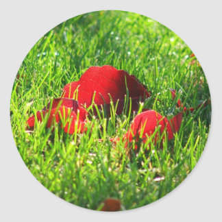 Red Leaves in Green Grass Classic Round Sticker