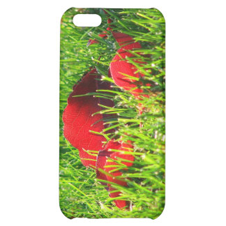 Red Leaves in Green Grass iPhone 5C Cases