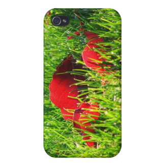 Red Leaves in Green Grass iPhone 4 Covers