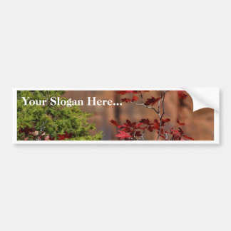 Red Leaves In Zion National Park Bumper Stickers