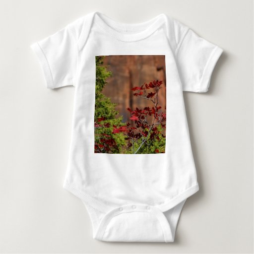 Red Leaves In Zion National Park T Shirts