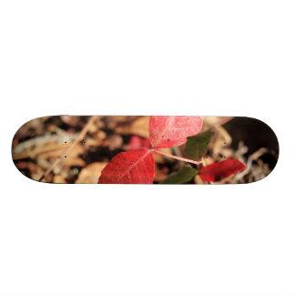 Red Leaves Skateboard